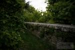 Pathway to the secret garden :)