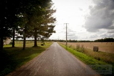 Oh, French countryside. How I love gazin' at ya.
